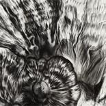 ALEXANDRA CHOWANIEC @ beaux-arts des amériques