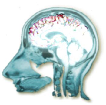Rdv_brain_logo