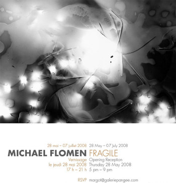 Michaelflomen